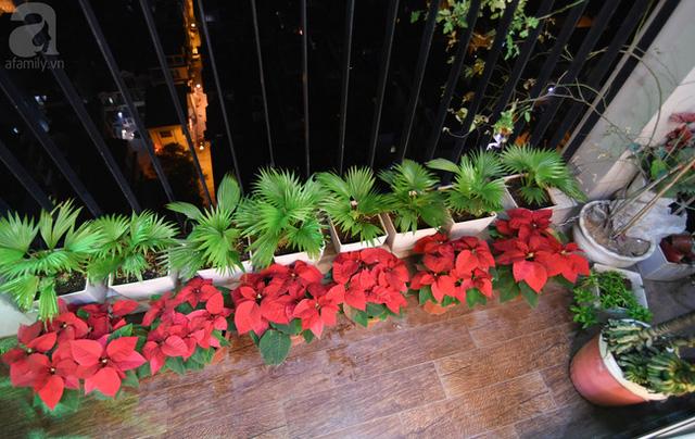 Vì căn hộ có 3 ban công nên view phòng khách không phải phơi đồ mà chỉ dành chỗ cho cây, hoa và chim.
